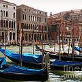 Veneziano Trasporto by Micki Findlay