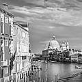 Venice Canal Grande Santa Maria Della Salute Black And White by Melanie Viola
