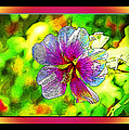 Venice Flower - Framed by Chuck Staley