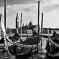 Venice Gondolas by Sonny Marcyan