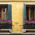 Venice Italy Teal Shutters by Robyn Saunders