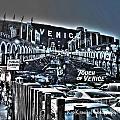 Venice Life