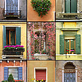 Venice Shutters by Robyn Saunders