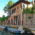 Venice Streetscape by John Malone