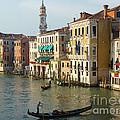 Venice Sun by Adrienne Franklin
