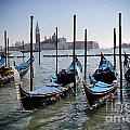 Venice by Ulisse
