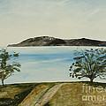 Ventura's Two Trees With Santa Cruz  by Ian Donley