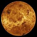 Venus by Sebastian Musial