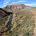 Verde River Along The Verde Canyon Railway With Fall Colors In Arizona by Ron Chilston