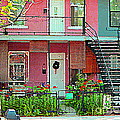 Verdun Flower Boxes Pink House Fenced Front Garden Red Flowers Staircase Scenes Carole Spandau by Carole Spandau