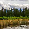 Vermilion Lakes by Jordan Blackstone