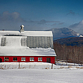 Vermont Barn In Snow With Mountain Behind by Jeff Folger