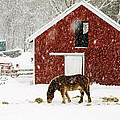 Vermont Christmas Eve Snowstorm by Edward Fielding