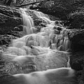 Vermont Forest Waterfall Black And White by Andy Gimino