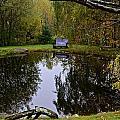 Vermont Pond In Autumn by Tana Reiff