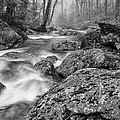Vermont River Fog Mount Mansfield Black And White by Andy Gimino