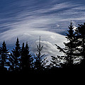 Vermont Tree Silhouette Clouds Cloudscape by Andy Gimino