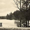 Vermont Winterland by Christy Gendalia
