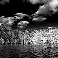 Vernon Lake One by Ken Frischkorn
