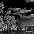 Vernon Lake Three by Ken Frischkorn