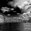 Vernon Lake Two by Ken Frischkorn