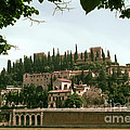Verona On The Adige by Bob Phillips