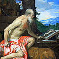 Veronese's Saint Jerome In The Wilderness by Cora Wandel