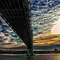 Verrazano Bridge by Michael Thomas