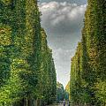 Versailles Promenade by Michael Kirk