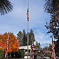 Vfw Hall Veterans Day by Michele Myers