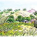 Viano Winery Martinez California by Irina Sztukowski