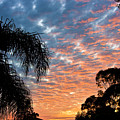 Vibrant Winter Sunset by Darren Burton