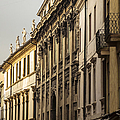 Vicenza by Prints of Italy