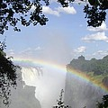 Victoria Falls Rainbow by Barbie Corbett-Newmin
