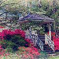 Victorian Garden by Lynne Jenkins