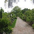 Victorian Garden by Melissa McCrann