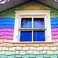 Victorian Rainbow by Ed Weidman