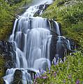 Vidae Falls And Flowers 2 by Lee Kirchhevel