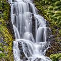 Vidae Falls by Jayme Spoolstra