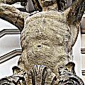 Vienna Pillar by Monica Wyrick