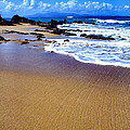 Vieques Beach by Thomas R Fletcher