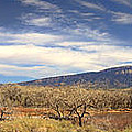 View Across The Rio Grande River Huge Panorama by Brian King