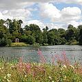 View At Bowood by Stuart Kerr
