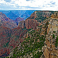 View Five From Walhalla Overlook On North Rim Of Grand Canyon-arizona by Ruth Hager
