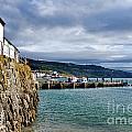 View From Back Beach - Lyme Regis by Susie Peek