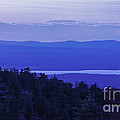 View From Cadillac Mountain by Diane Diederich