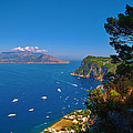 View From Capri by Dany Lison