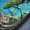 View From Capri.italy by Jennie Breeze