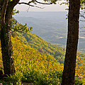 View From Lookout Mountain by Melinda Fawver