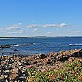 View From Marginal Way Ogunquit Maine 3 by Michael Saunders